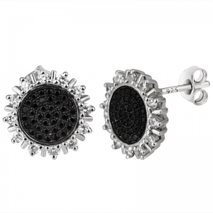 Two Tones Plated Earrings